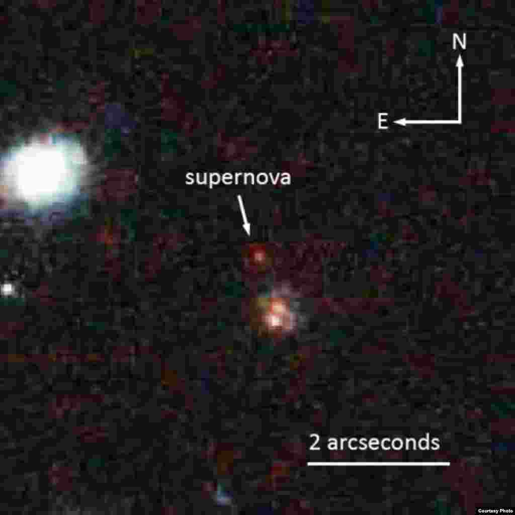 NASA's Hubble Space Telescope captured this image of the 10-billion year old supernova SCP-0401. (Space Telescope Science Institute)