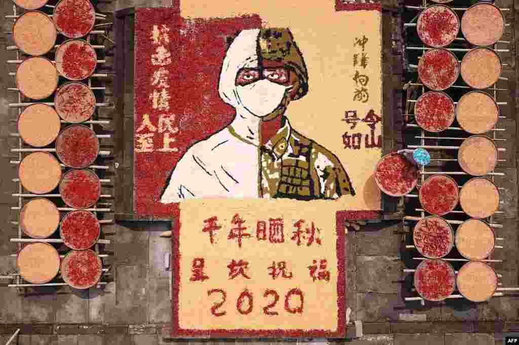 Çində qarğıdalı qurudulması