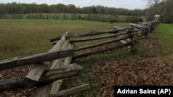 Northern and Southern troops clashed in this field, known as the Hornet's Nest, in Shiloh, Tennessee. (AP Photo/Adrian Sainz)