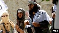 امریکا او افغان چارواکي هڅه کوي چې له طالبانو سره د سولې خبرې وکړې