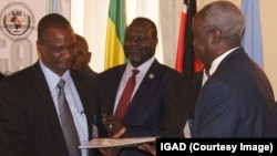 Taban Deng Gai (L), lead negotiator for the South Sudanese armed opposition, exchanges a signed recommitment to stop hostilities agreement with Nhial Deng, lead government negotiator, at an IGAD summit in Ethiopia on Nov. 9, 2014. Opposition leader Riek Machar looks on.