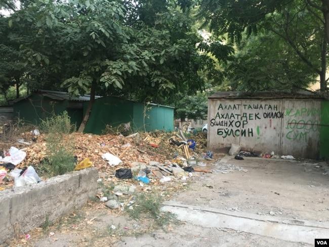 Toshkent ko'chalarida