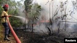 20일 인도네시아 리아우주의 숲에서 소방관들이 진화 작업에 나섰다.