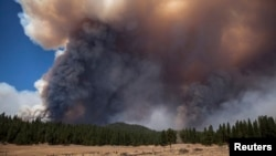 The Rim Fire burns in the background near the border of Yosemite National Park, California, Aug. 23, 2013.