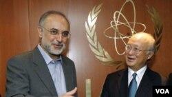 Menlu Iran Ali Akbar Salehi (kiri) bersama Direktur IAEA Yukiya Amano sebelum pembicraan di Wina, Austria (foto: dok.). Iran akan membatasi kerjasama dengan inspektur nuklir IAEA.