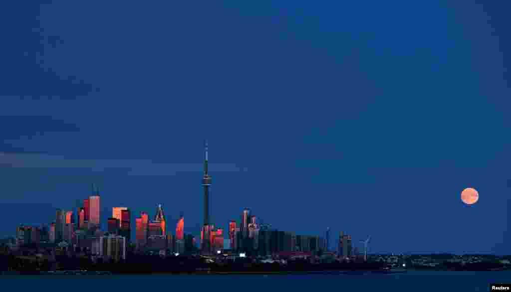 ព្រះចន្ទរះឡើងនៅក្រោយបណ្តុំអគារនៅក្នុងក្រុង Toronto ប្រទេសកាណាដា កាលពីថ្ងៃទី២៦ ខែតុលា ឆ្នាំ២០១៥។