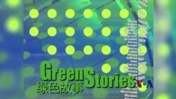 绿色故事系列:环保生态教育