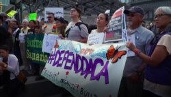 Стена в обмен на сделку по DACA