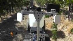 Des robots fermiers