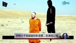 恐怖分子视频宣称斩首第二名美国记者