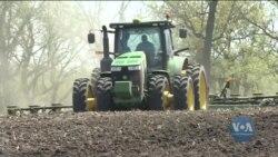 Україна витісняє США з китайського ринку кукурудзи. Відео