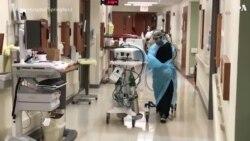 Энтони Фаучи: очередного локдауна в связи с коронавирусом не будет