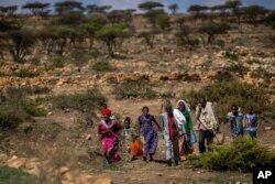 FILE - People walk from a rural area toward a nearby town where a food distribution site operated by the Relief Society of Tigray was taking place, near Agula, in the Tigray region of northern Ethiopia, May 8, 2021.