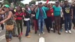 Zanu PF Youth Stage Peaceful March to Mark Mugabe's 93rd Birthday, Leadership