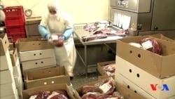 Dünyaya baxış - 17 aprel 2013 [Video]