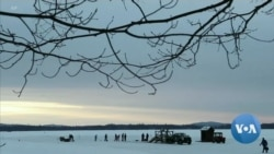 Ice Harvesting Tradition Continues for 120-Plus Years