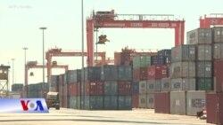 Thủ tướng VN ra lệnh dừng xuất khẩu gạo giữa dịch corona
