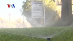 Water Wars: In LA, It's Laws against Lawns (VOA On Assignment July 25, 2014)