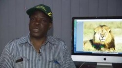 Secretary for Environment Water and Climate, Prince Mupazviriho On Lion Deaths In Zimbabwe