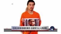 日本分析新音频的真伪 加紧努力让人质获释