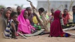 前索马里难民取得总理支持反对女性割礼