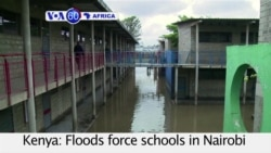 VOA60 Africa- Dozens more elephants die in Zimbabwe after cynide poisoning; Flooding closes schools in Nairobi