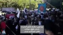 شعار مردم و حامیان حیوانات در اعتراض به کشتار سگها مقابل شهرداری تهران