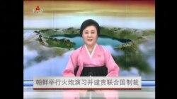 朝鲜举行火炮演习并谴责联合国制裁