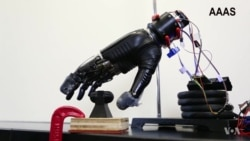 Scientists Create 'Electronic Skin' to Restore Sense of Pain