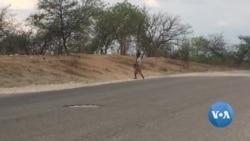 Moçambique: Buracos na estrada criam novas oportunidades para pobres