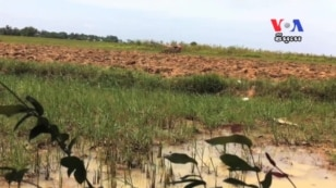 WATCH (in Khmer): Changing Climate Has Major Impacts for Under-Prepared Cambodia