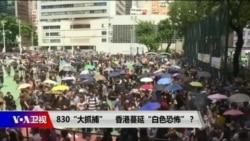 """海峡论谈:830""""大抓捕"""" 香港蔓延""""白色恐怖""""?"""