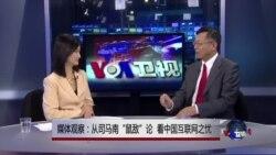 """媒体观察:从司马南""""鼠敌""""论,看中国互联网之忧"""