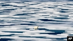 FILE - In this Saturday, July 22, 2017, file photo, a polar bear stands on the ice in the Franklin Strait in the Canadian Arctic Archipelago. The U.N.'s climate chief Patricia Espinosa says deadlines set by some of the world's top polluters to end…