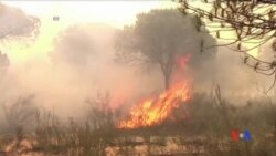 2017-06-26 美國之音視頻新聞:西班牙南部山火威脅到當地自然保護區 (粵語)