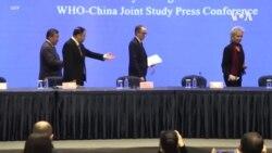 英國也對世衛武漢調查結果表示擔憂 中國回應白宮週六聲明