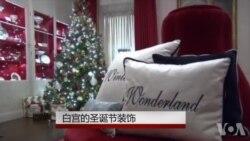 圣诞节的白宫 - 冬天的童话世界