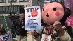 日本加入跨太平洋框架谈判 中国何去何从?