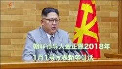 金正恩新年致辞穿浅灰衣服 韩专家称可能释放软化信号