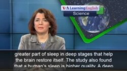 Humans Sleep Less, Better Than Other Mammals