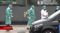 Truyền hình VOA 25/1/20: Lo ngại coronavirus, dân kêu gọi đóng cửa biên giới Việt-Trung (Mùng 1 Tết Canh Tý)
