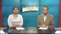 Qubanaha VOA, Nov. 27, 2014