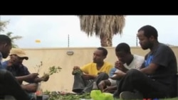 Chewing Khat on the Rise in Ethiopia