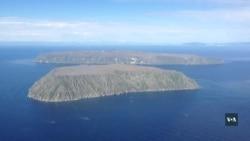 Американський острів у Беренговій протоці: чим займаються мешканці острова та чому інколи їх обстріляють з боку Росії? Відео