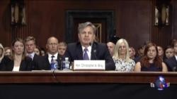 川普提名的FBI局长人选参院作证