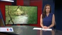 BiH: Na 250 rijeka planira se gradnja oko 300 hidroelektrana