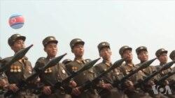 脱北者:希望中国政府慈悲,文金会人权应优先核武