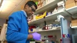 个性化疫苗可以预防多种疾病