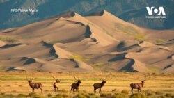 Пустеля поміж засніжених гір у штаті Колорадо. Відео