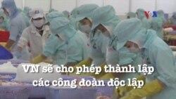 Việt Nam sẽ cho phép thành lập các công đoàn độc lập